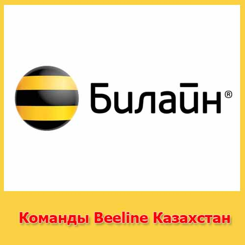 Команды Beeline Казахстан